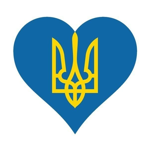В Житомир с Донбасса вернулись около 250 десантников 95-ой отдельной аэромобильной бригады - Цензор.НЕТ 1778