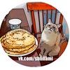 Кот Джаз | Кот с блинами | Довольный кот