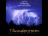 Dan Gibson - Thunderstorm in the wilderness