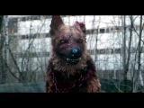 Чернобыль Зона отчуждения 8 серия