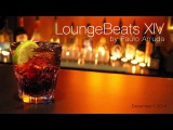 DJ Paulo Arruda - Lounge Beats 14