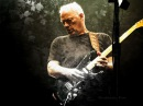 David Gilmour - The Best Guitar Solos