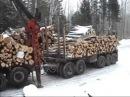 Лесовоз Вывозка сортиментов с лесосеки сортиментовозом с гидроманипулятором