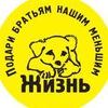 """""""Жизнь"""" -группа  помощи бездомным животным"""