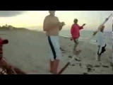 Монстр акула молот на пляже