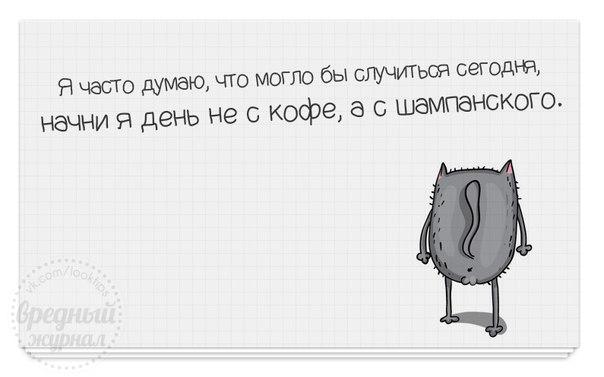 http://cs624331.vk.me/v624331711/49040/ykBqGfiBPFw.jpg