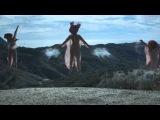 The Acid - Basic Instinct (Official Video)