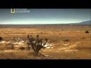 В поисках правды. НЛО / The Truth Behind. UFOs 2011 National Geographic