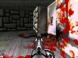 Brutal doom II map 31-32 (Wolfenstein and Grosse)