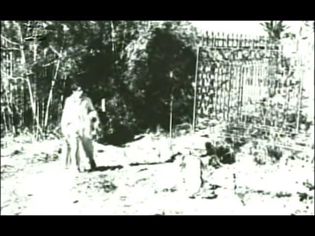 Caetano Veloso em Proezas de Satanás na Vila de Leva e Traz 1967 Excerto 4