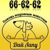 "ОД ""Дай лапу"" 29-22-99 (г.Сургут, ХМАО)"