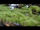 Дорама «Возвращение Иль Чжи Мэ» 10 серия