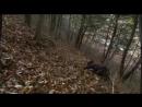 Дорама «Возвращение Иль Чжи Мэ» 16 серия
