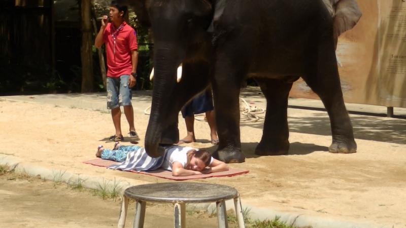 массаж по-слоновьи