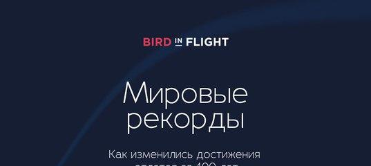7017e175f346 Bird in Flight — Мировые рекорды