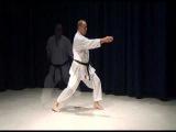 Shotokan Kihon 5 Basic Combinations Of Karate Shotokan Techniques
