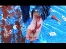 Slip 'N' Slide of Death Feat HowToBasic World Cup