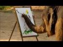 слон рисует,да как рисует
