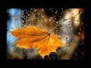 Я тебя люблю, Осень!