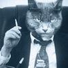 Бизнес Кот ☝