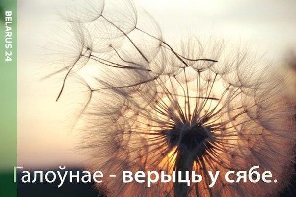 http://cs624418.vk.me/v624418687/4315f/raIiN3PSoro.jpg
