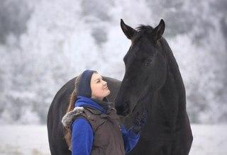 Отдых в Токсово Лошади