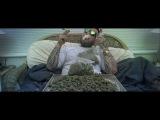Gang Albanii - Marihuana