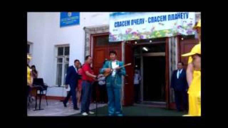 стена защиты пчел г Алматы (2015г). WSBF