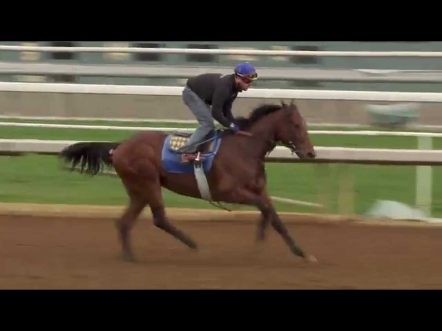 Baffert Talks About 2 Year Old Champion American Pharoah's Targets