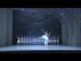 Лебединое озеро. Австралийский балет (2010, Балет)