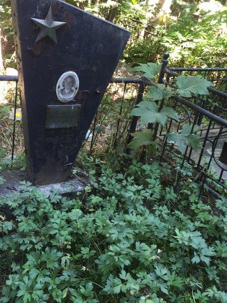 собачье кладбище в южно сахалинске