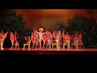 Король Лев 14.06.2014 Одесский театр оперы и балета