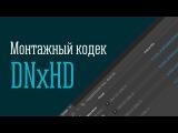 Монтажный кодек DNxHD. Установка, сравнение, пакетное конвертирование в Adobe Media Encoder.