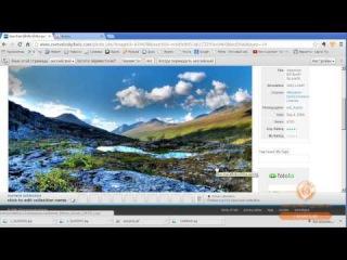 Everystock - сервис для поиска картинок
