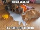 Александр Константинов фото #25