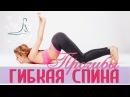 Гибкая и сильная спина за 15 минут ПРОГИБЫ Strong Flexible Spine