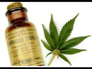 Наркотики в Америке. Как обстоят дела с наркотиками в США