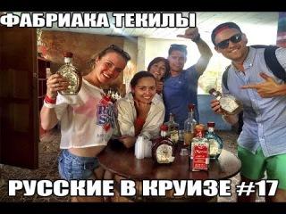Русские в Круизе #17 - До Чего Доводит Бесплатная Дегустация Текилы в Мексике