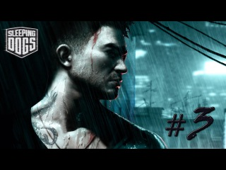 Sleeping Dogs. Nightmare in Northpoint DLC. #3 - Веселый кот. [ФИНАЛ]