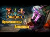 Время героев: Красавицы Альянса (World of Warcraft: Warlords of Draenor)