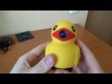 Видео регистратор утка! Полный обзор! Скоро розыгрыш!)