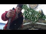 Выжить в Лесу | Умрет ли Виа?