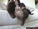 Mocha Ebony Pantyhose Feet Teasing