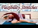 Stretches To Improve Flexibility - 8 Minute Basic Dance Ballet Stretch Exercise Routine