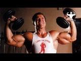 Как накачать большие плечи(дельты) - комплекс упражнений в домашних условиях не сходя с места ))