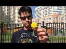 Back in time dandelion magic