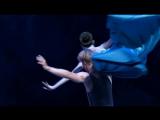 Auerbach - The Little Mermaid (2011)