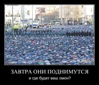 Яника Мерило: У меня нет цели сбить Яценюка - Цензор.НЕТ 7806
