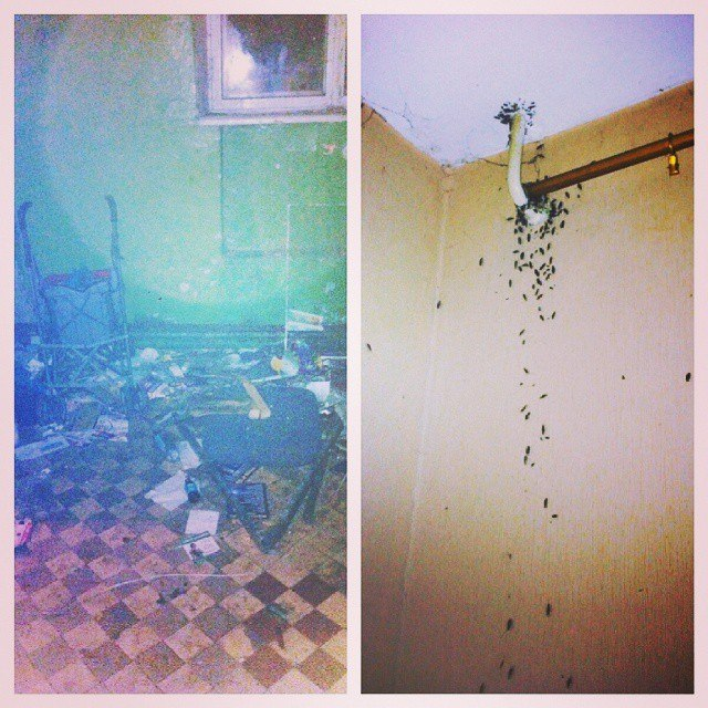 «Ужас» вобщежитии №3