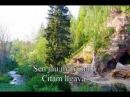 Dažu skaistu ziedu Latviešu dziesmas YouTube